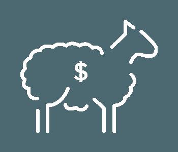 East-Loddon-Merino-Stud-Breeding-Philosophy-growth-icon